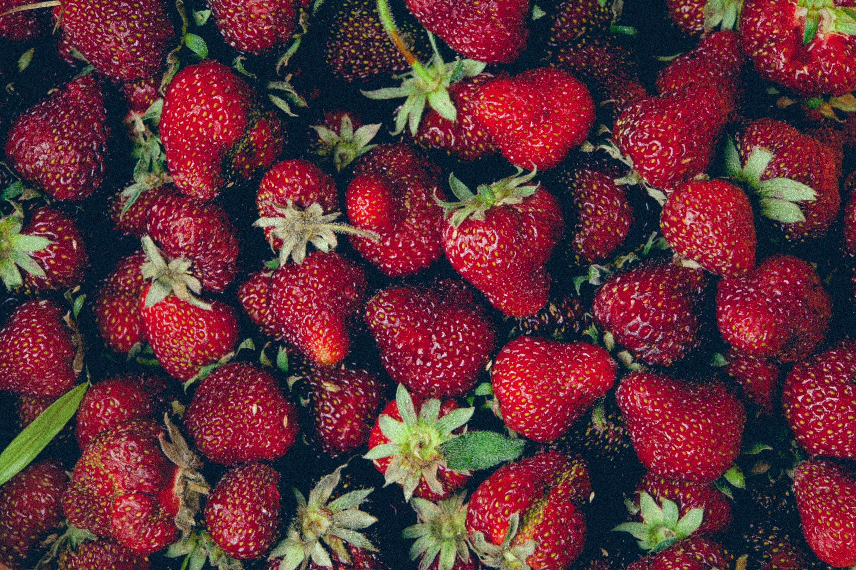 Fruit-55