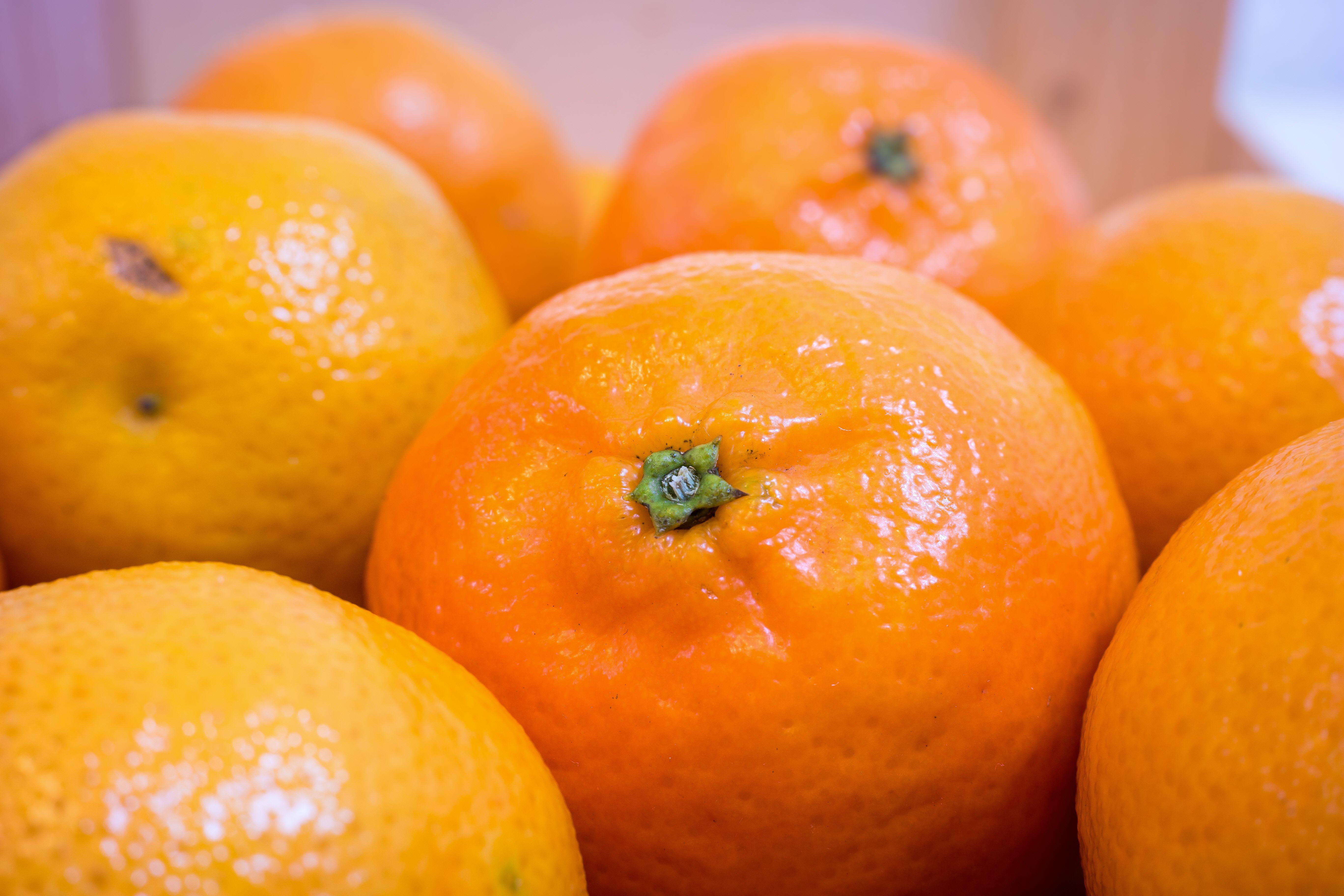 Fruit-31