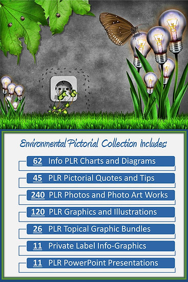 Environmental Pictorial Portfolios