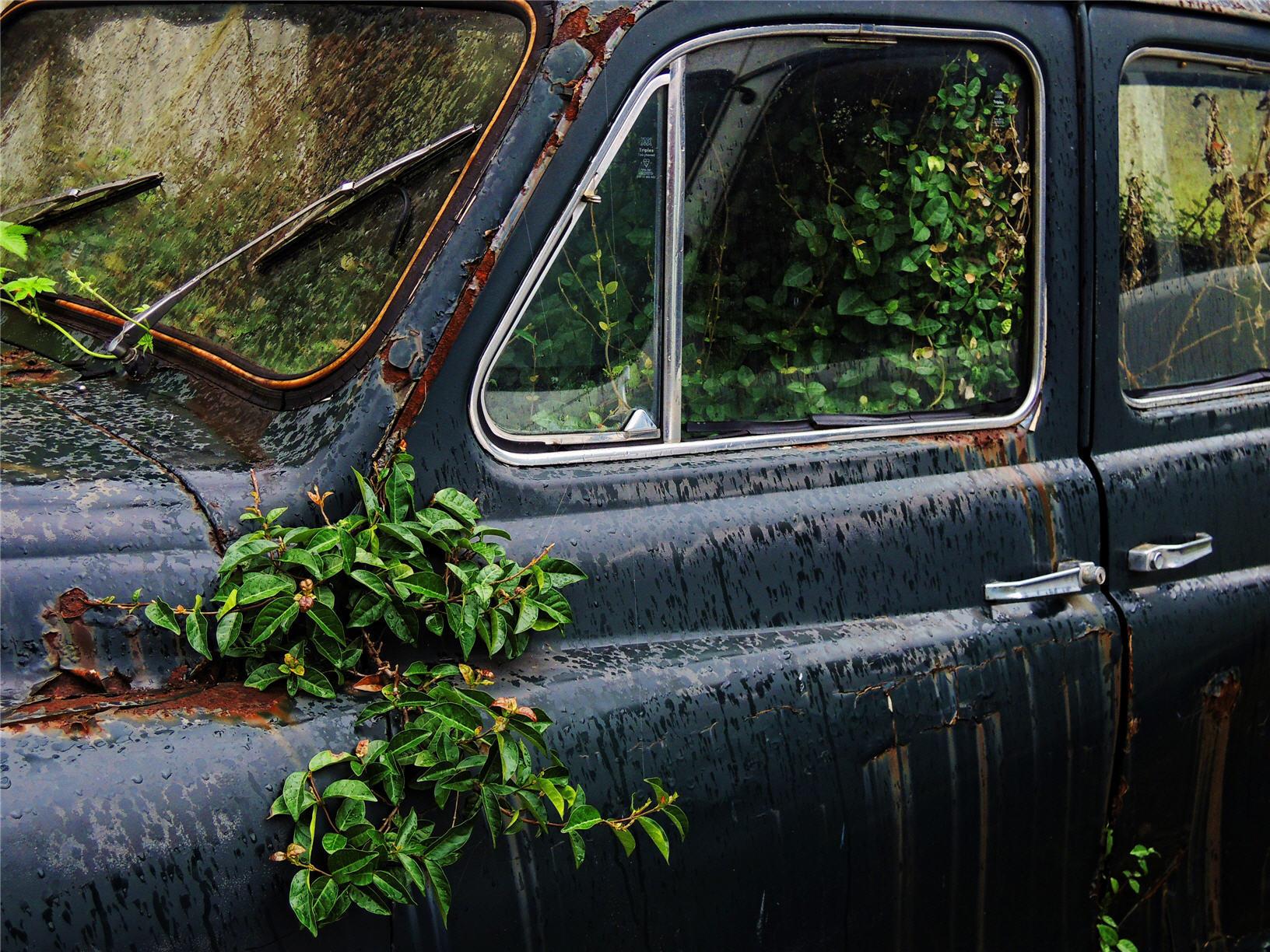 classic-cars- 07