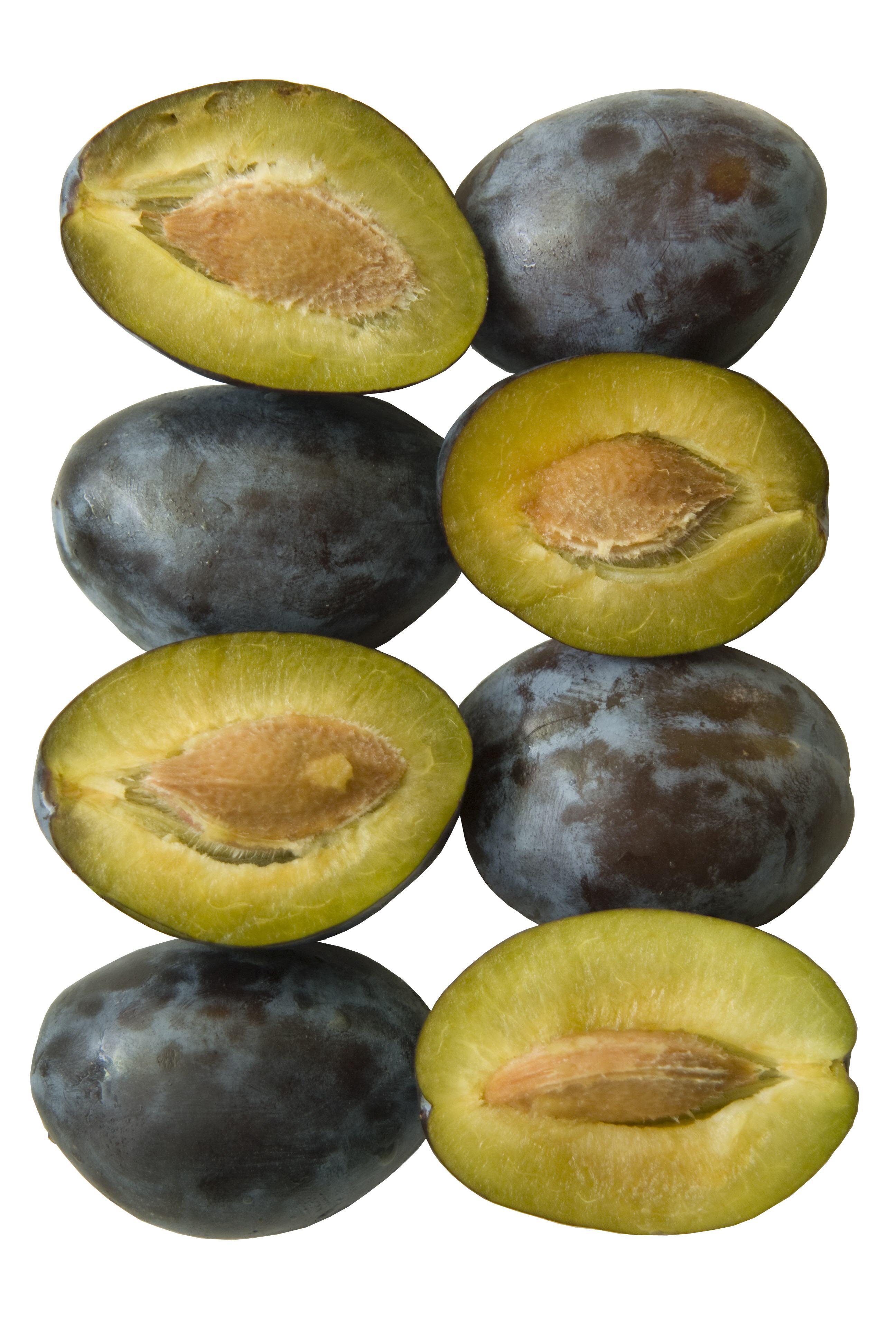 Fruit-47
