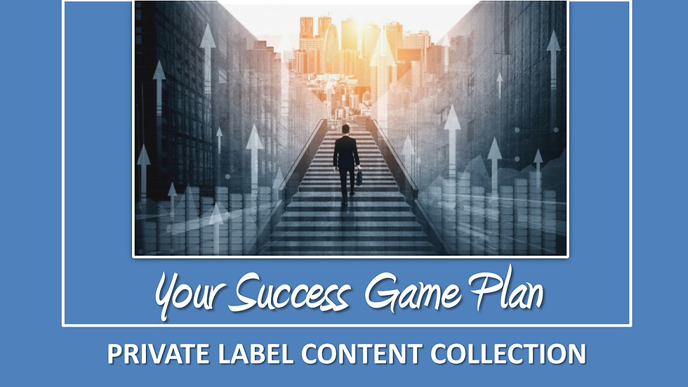 Your Success Game Plan PLR Pack