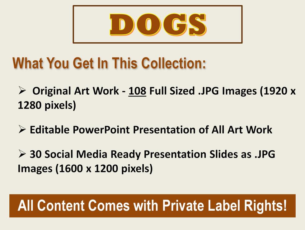 DogPA-02.JPG