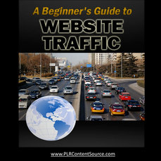 Beginners Guide To WEBSITE TRAFFIC