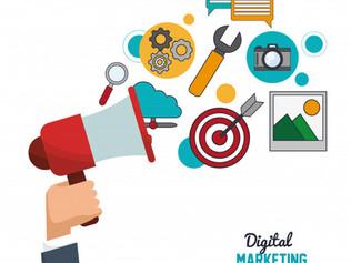 DigitalVectors-20.jpg