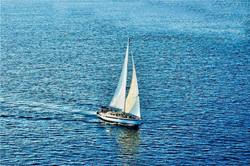 SailBoats-14