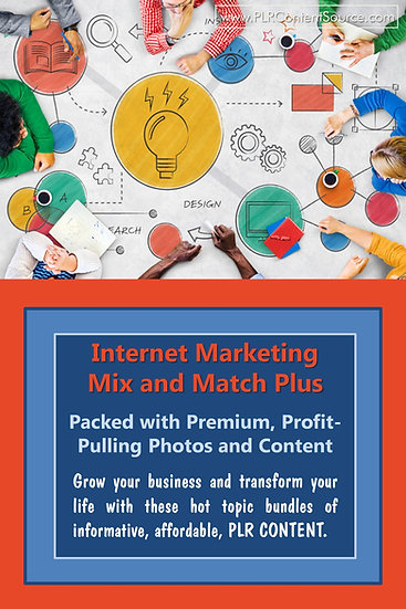 Internet Marketing Mix and Match Plus Collection