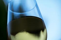 Wine-16
