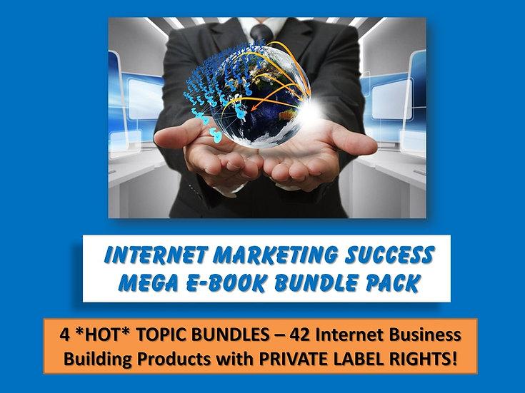 Internet Marketing Success MEGA eBook Bundle Pack