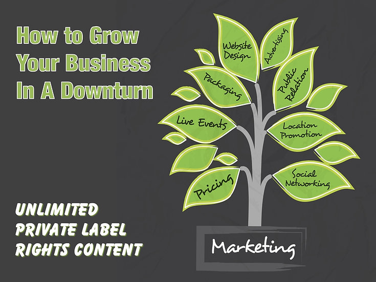 How To Grow Your Business In A Downturn Unlimited PLR Pack