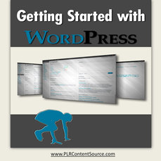 GETTING STARTED WITH WORDPRESS REPORT