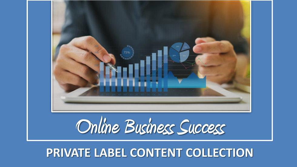 Online Business Success PLR Pack