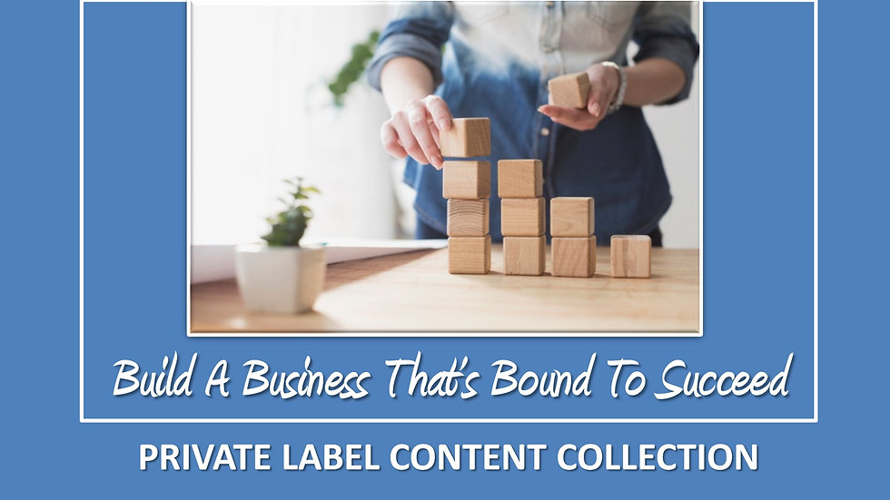 Build A Business That's Bound To Succeed PLR Pack