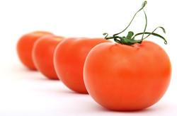 Vegetables-36