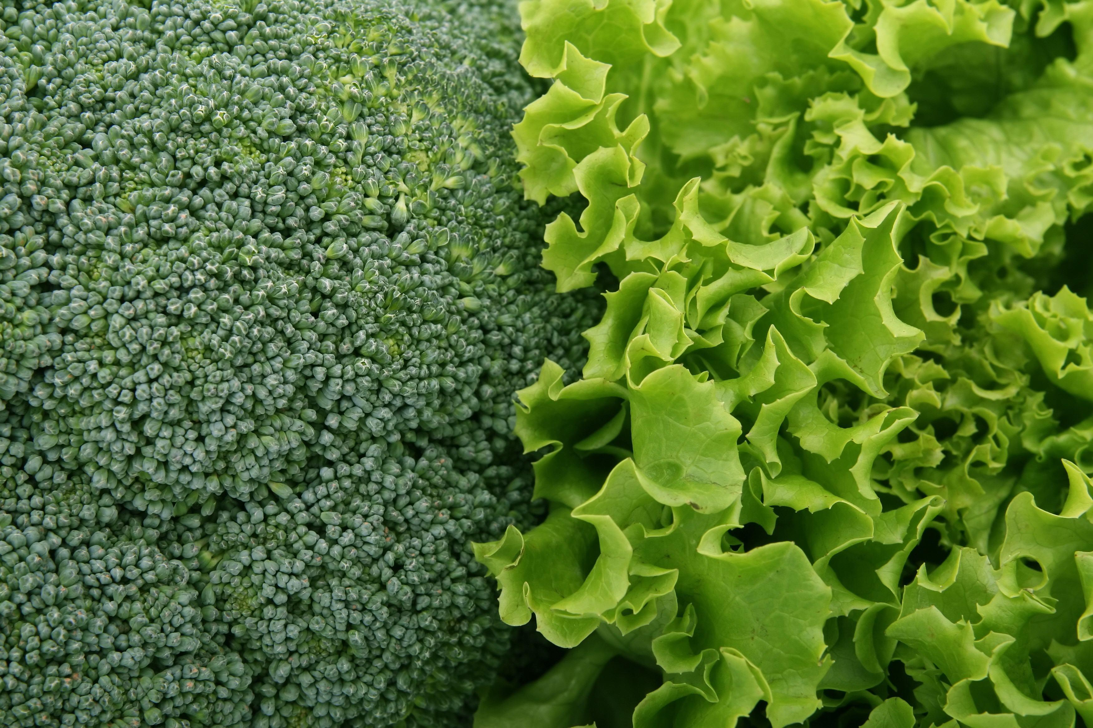 Vegetables-53