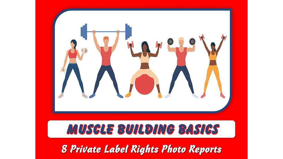 Muscle Building Basics Private Label Content Pack