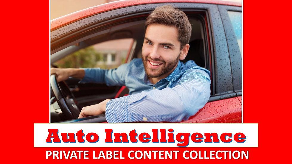 Auto Intelligence PLR Product Pack