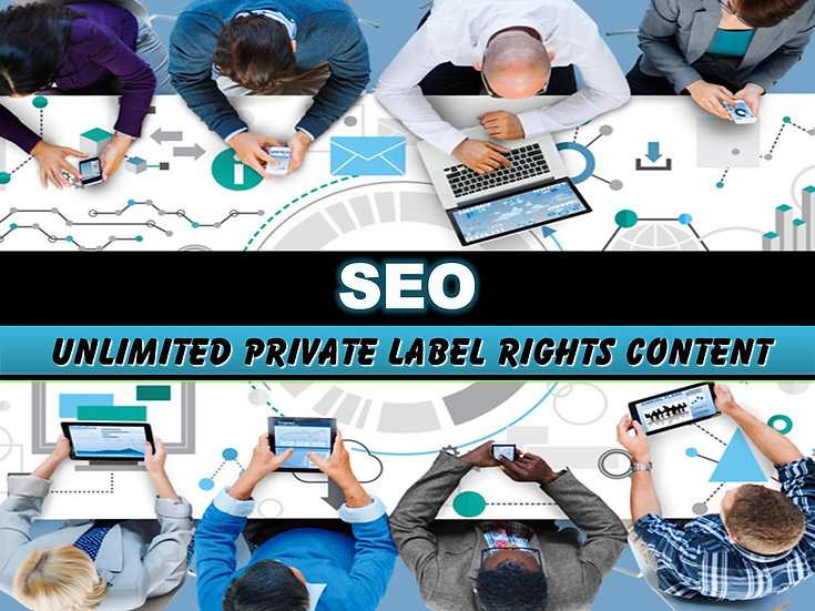 SEO: Search Engine Optimization Unlimited PLR Pack