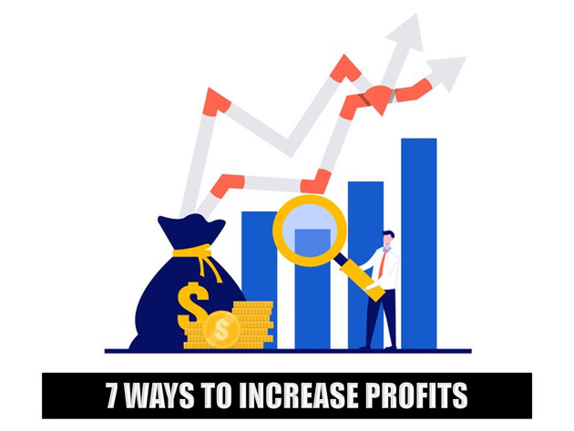 7 Ways to Maximize Profits