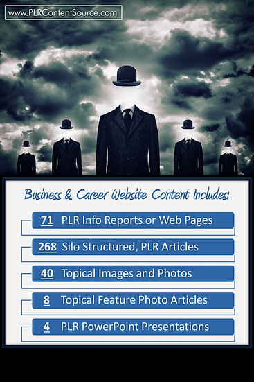 Business and Career Turnkey Content Sites