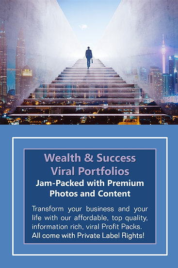Wealth and Success Niche Domination Pack