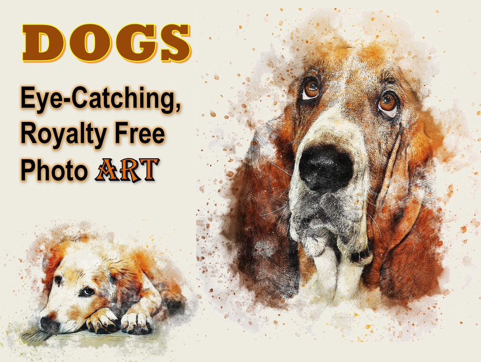 DOGS Photo Art Collection