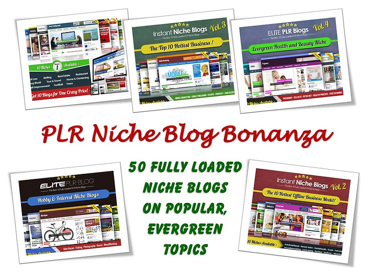 PLR Niche Blog Bonanza