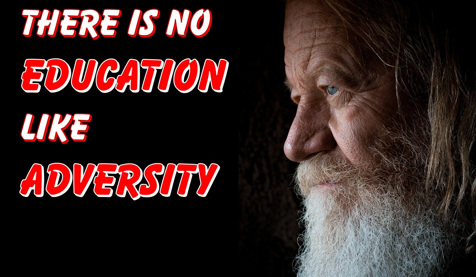 There Is No Education Like Adversity Art Quotes