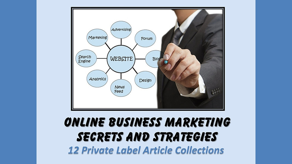 Online Business Marketing PLR Articles
