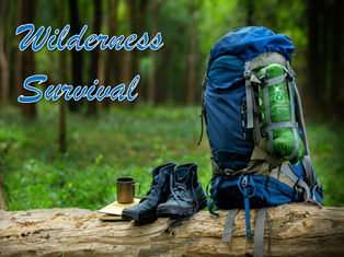 Free Wilderness Survival Reports and eBooks