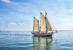 SailBoats-21