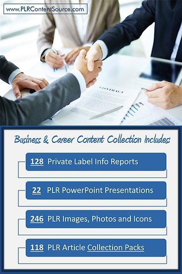 Business and Career Content Portfolios