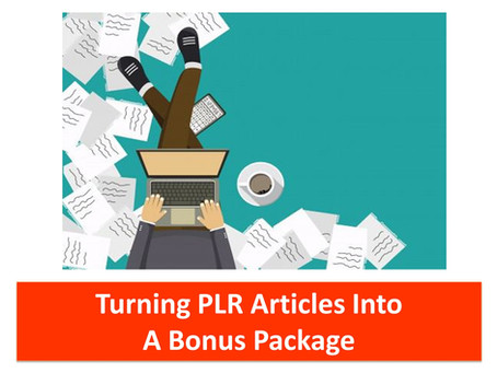 Turning PLR Articles Into A Bonus Package