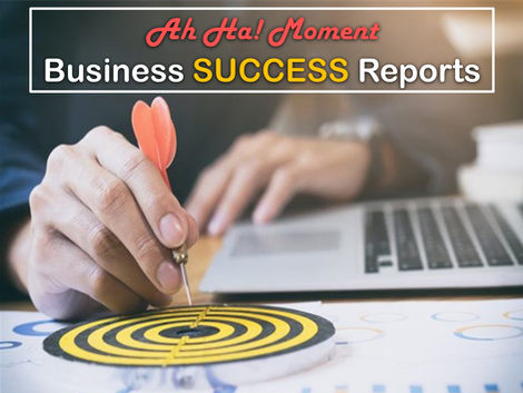 Ah Ha! Business Success Reports