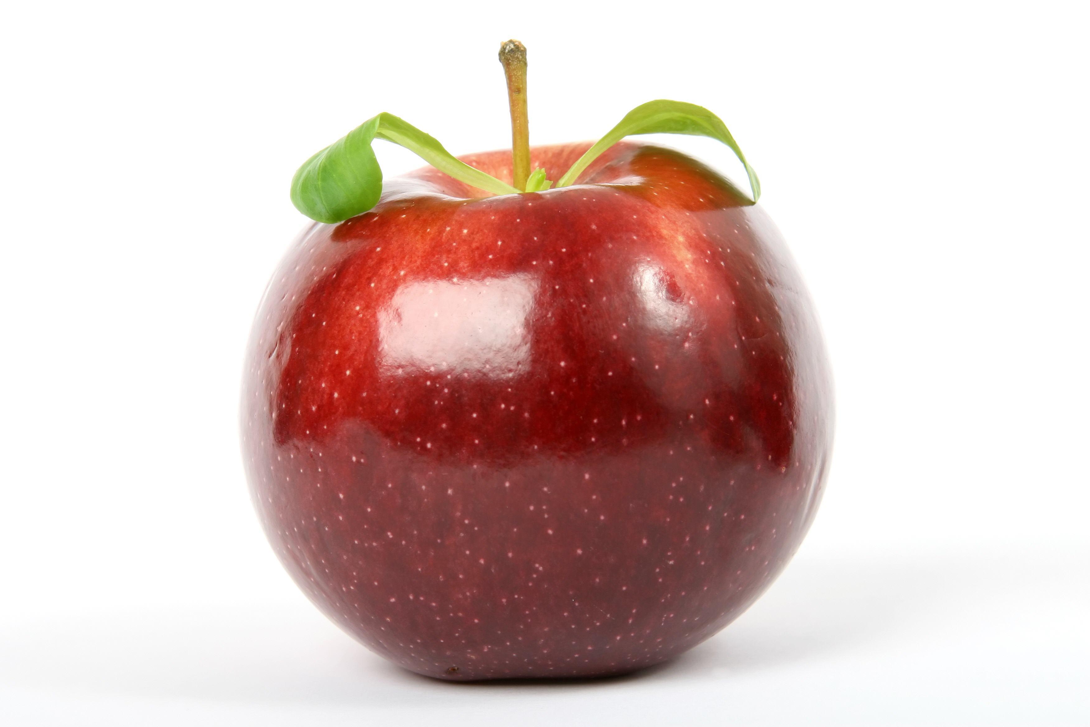 Fruit-02