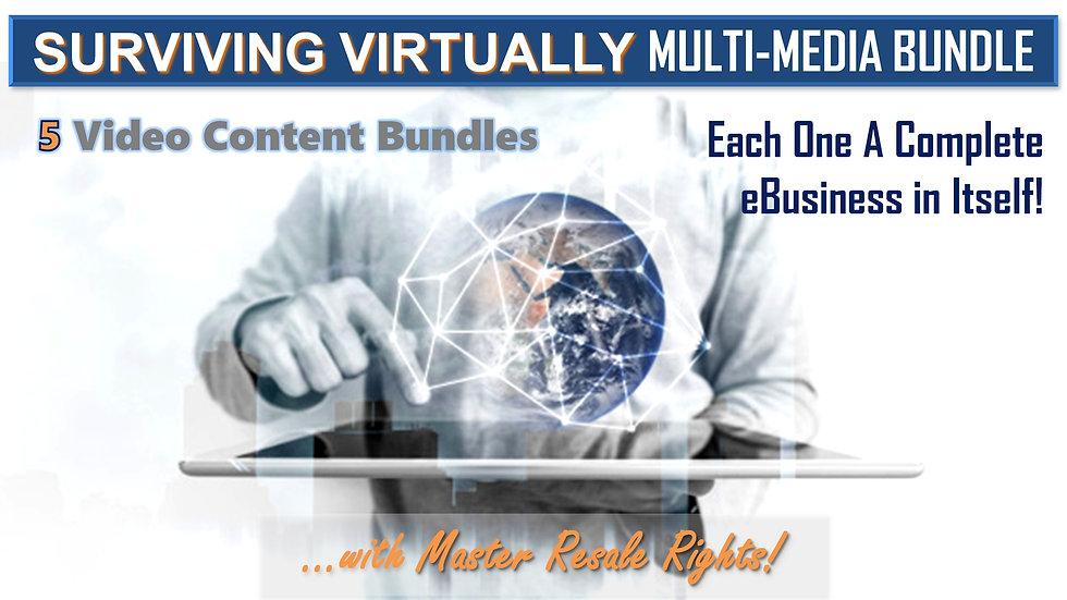 Surviving Virtually Multi-Media Collection