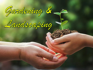 Free Gardening and Landscaping Reports