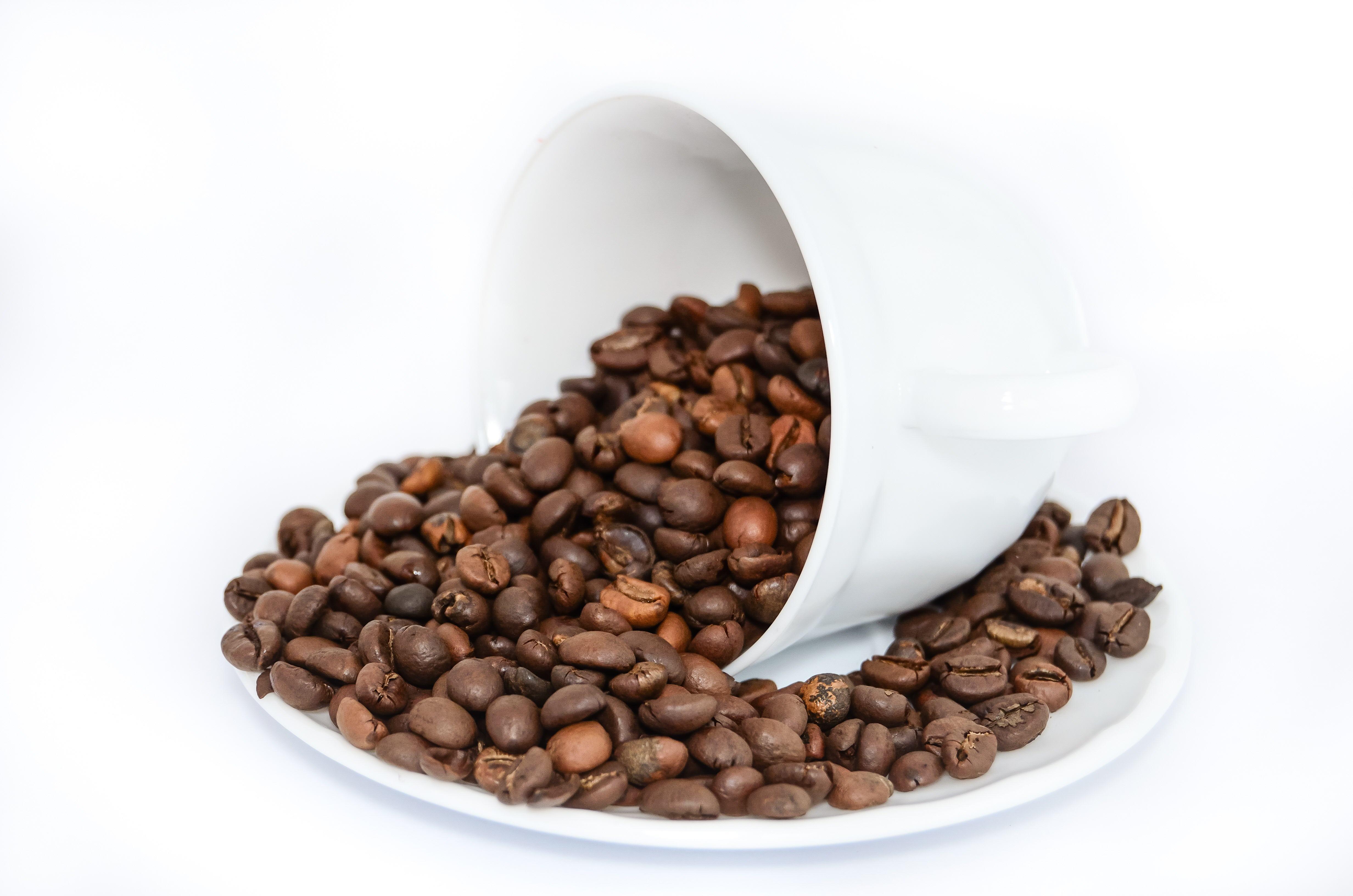 CoffeeTea-16