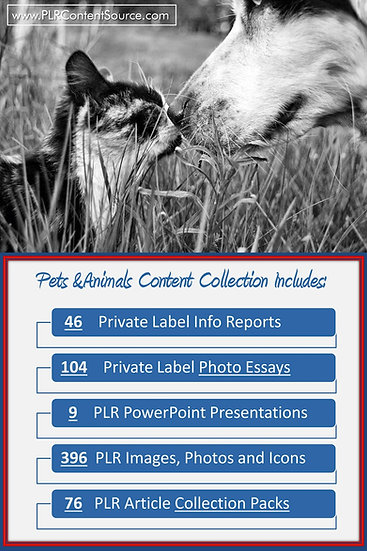 Pets and Animals Content Portfolios