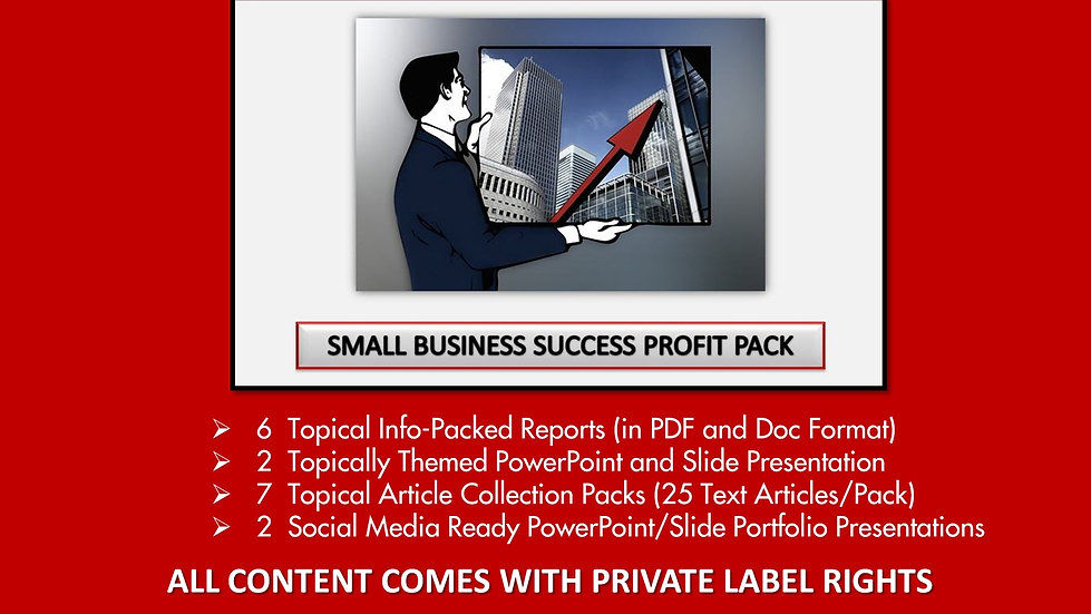 Small Business Success Private Label Profit Pack