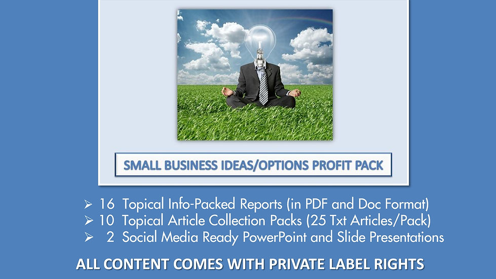 Small Business Ideas and Options PLR Profit Pack