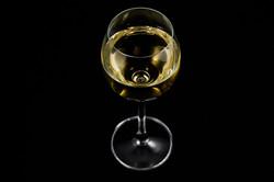 Wine-26
