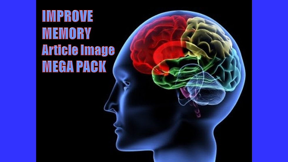Improve Memory PLR Article and Image MEGA Pack