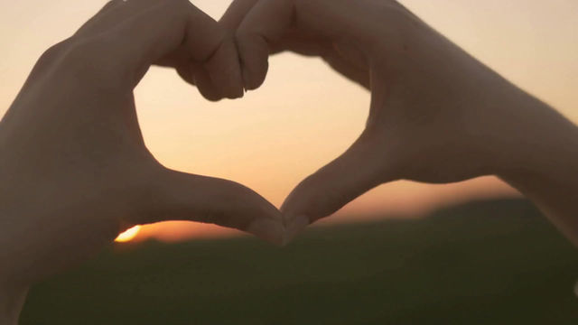 The most beautiful things in the world cannot be seen or touched, they are felt with the heart.