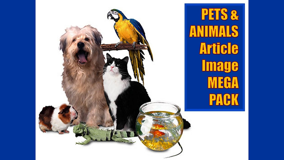 Pets and Animals Article and Image MEGA Pack
