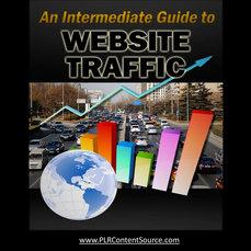 Intermediate Guide to WEBSITE TRAFFIC