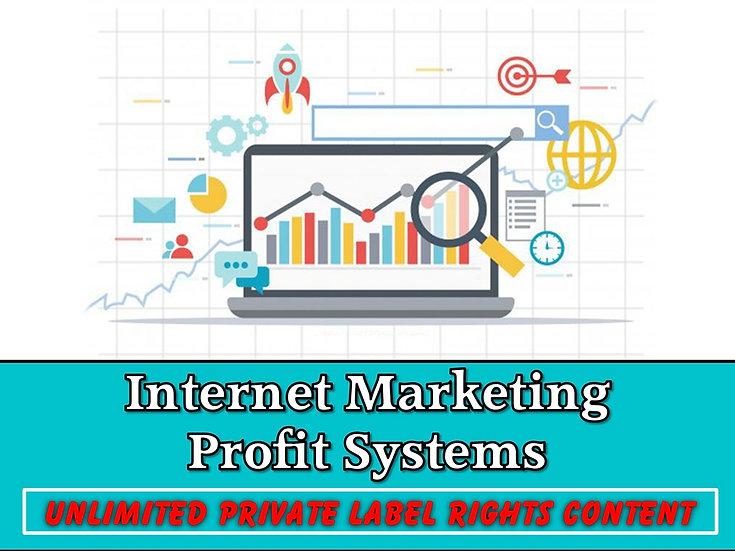 Internet Marketing Profit Systems Unlimited PLR Pack