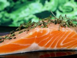 Seafood-07