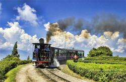 Railroads-05