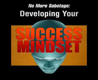 SUCCESS MINDSET REPORT